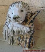 Porcupine - The Canadian Monkey
