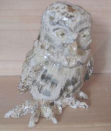 Owl - Day 10