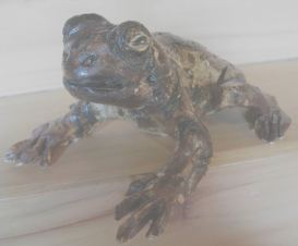 Toad - Day 13