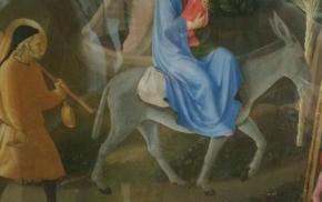 Donkey in San Marco Fresco, Florence