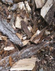 Wood chips and scraps from next winters fire wood.
